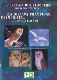 Effraie des clochers - dvd  oiseaux champions olympiques