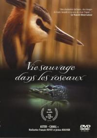 Vie sauvage dans roseaux - dvd