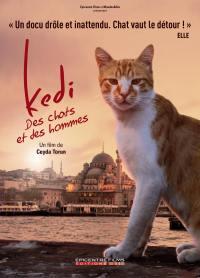 Kedi - des chats et des hommes - edition simple - dvd