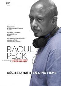 Raoul peck recits d'haiti - 5 dvd
