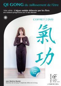 Coffret qi gong le jaillisement de l'etre - 2 dvd