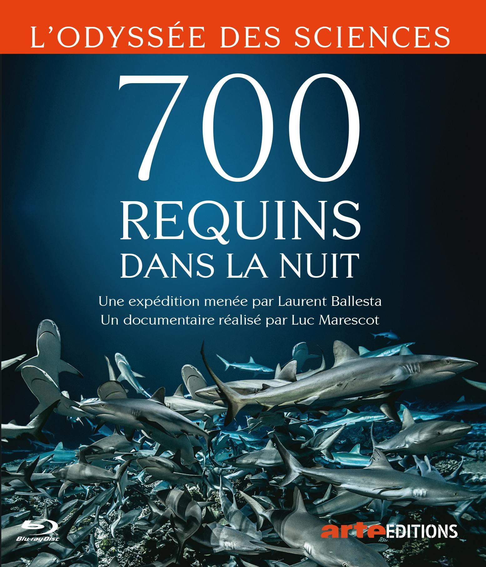 700 requins dans la nuit - combo dvd + blu-ray