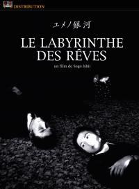 Labyrinthe des reves - dvd
