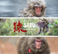 Saru : singes du Japon