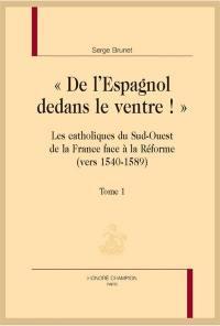 De l'Espagnol dedans le ventre ! : les catholiques du sud-ouest de la France face à la Réforme (vers 1540-1589)
