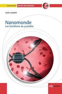 Nanomonde : les frontières du possible