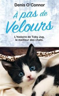 A pas de velours : l'histoire de Toby Jug, le meilleur des chats