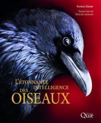L'étonnante intelligence des oiseaux