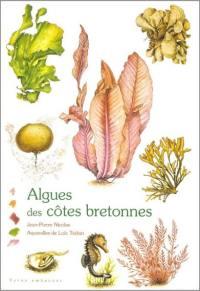 Algues des côtes bretonnes