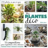 Mes plantes déco : 50 compositions pour végétaliser votre intérieur, 155 photos en pas-à-pas : kokedamas, bonsaïs, terrariums, succulentes