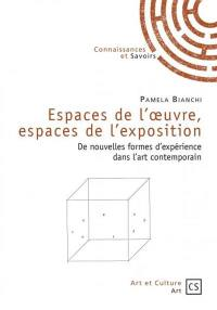Espaces de l'oeuvre, espaces de l'exposition : de nouvelles formes d'expérience dans l'art contemporain