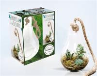 Bubble terrarium