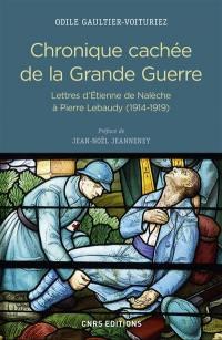 Chronique cachée de la Grande Guerre : lettres d'Etienne de Nalèche à Pierre Lebaudy (1914-1919)