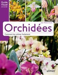 Orchidées : comment les cultiver facilement