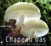 Chapeau bas ! : le monde insolite des champignons