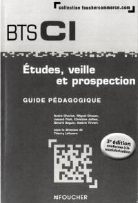 Etudes, veille et prospection : BTS CI, 1re année : guide pédagogique