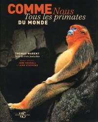 Comme nous, tous les primates du monde