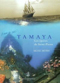 Tamaya : les épaves de Saint-Pierre