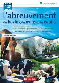 L'abreuvement des bovins, des ovins et des équins