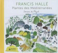 Plantes des Méditerranées
