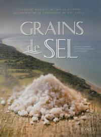 Grains de sel : itinéraire dans les salines du littoral bas-normand de la préhistoire au XIXe siècle