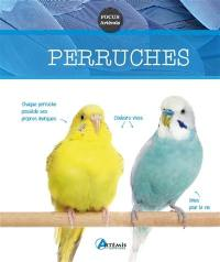 Perruches