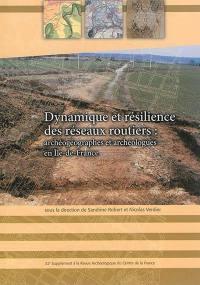 Dynamique et résilience des réseaux routiers : archéogéographes et archéologues en Ile-de-France