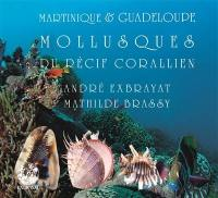 Martinique & Guadeloupe. Volume 2, Mollusques