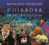 Martinique & Guadeloupe. Volume 3, Les poissons