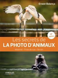Les secrets de la photo d'animaux