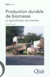 Production durable de biomasse : la lignocellulose des poacées