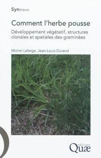 Comment l'herbe pousse : développement végétatif, structures clonales et spatiales des graminées