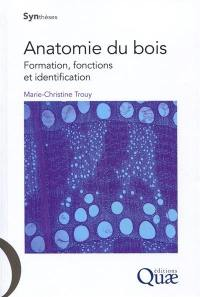 Anatomie du bois : formation, fonctions et identification