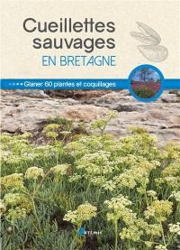 Cueillettes sauvages en Bretagne
