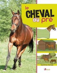 Avoir un cheval dans un pré
