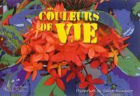 Beautés curatives : mes couleurs de vie
