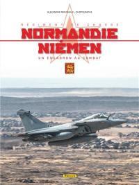 Régiment de chasse Normandie-Niémen : un escadron au combat