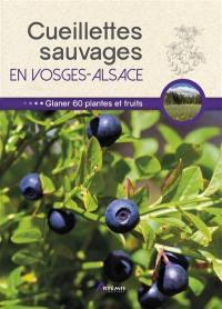 Cueillettes sauvages en Vosges-Alsace