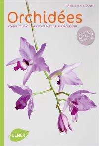 Orchidées : comment les cultiver et les faire fleurir facilement