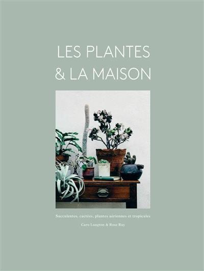 Les plantes & la maison : succulentes, cactées, plantes aériennes et tropicales