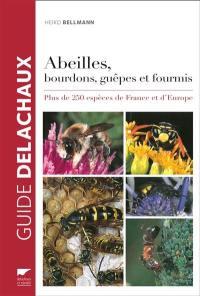 Abeilles, bourdons, guêpes et fourmis : plus de 250 espèces de France et d'Europe