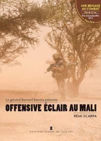 Offensive éclair au Mali