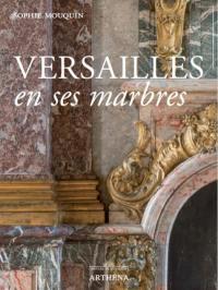 Versailles en ses marbres : politique royale et marbriers du roi