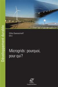 Microgrids : pourquoi, pour qui ?