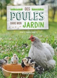 Des poules dans mon jardin : un rêve accessible si le tout est bien orchestré !