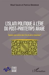 L'islam politique à l'ère du post-Printemps arabe : sommes-nous entrés dans l'ère du nécro-islamisme ?
