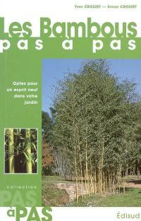 Les bambous pas à pas