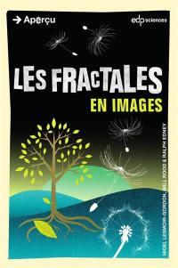 Les fractales en images