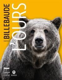 Billebaude. n° 9, L'ours