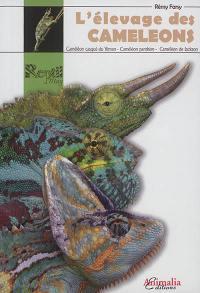 L'élevage des caméléons